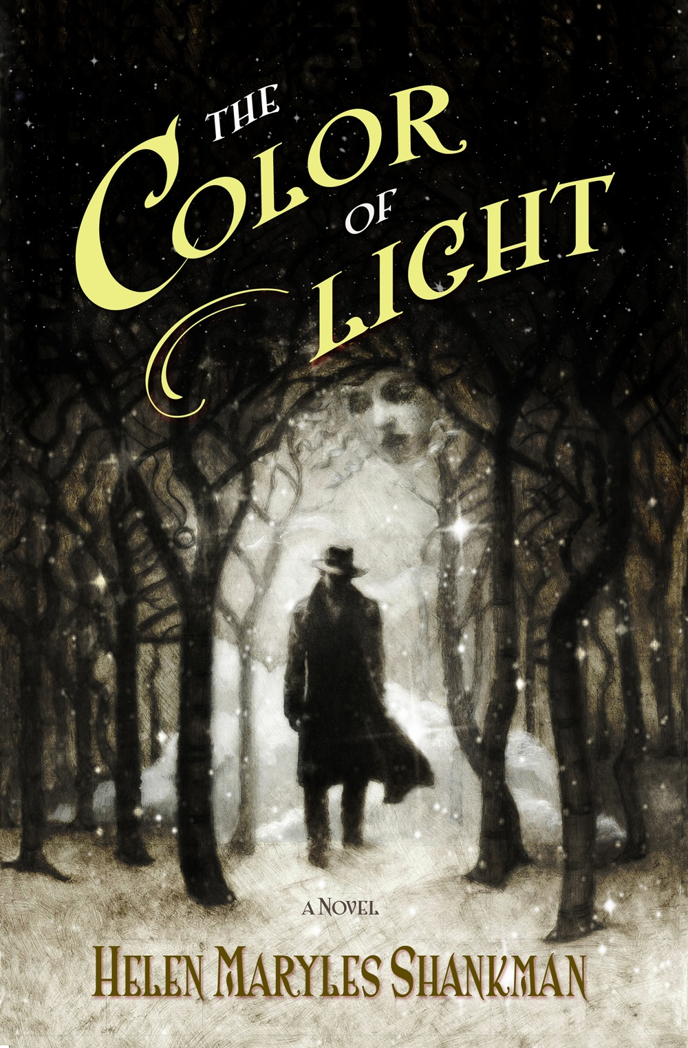 The Color of Light | HELEN MARYLES SHANKMAN